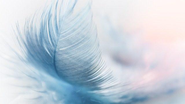 軽さを表すために使われる羽毛
