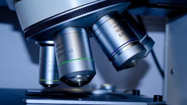 顕微鏡で研究サンプルを評価しているところ